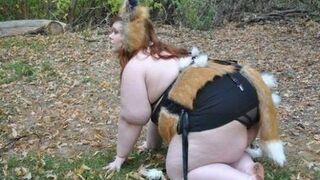 Lisica!
