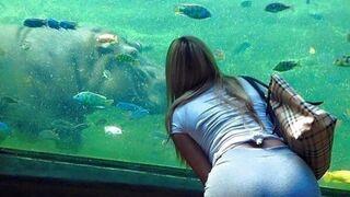 Fajne rybki!