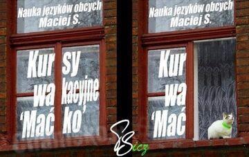Nauka języków obcych (ukryty przekaz)
