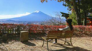 Rząd w Tokio: Japonia ma problem ze zbyt dużą liczbą dziewic