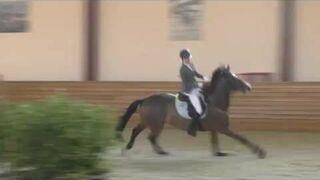 Koń zrzuca jeźdźca i skacze sam przez przeszkody!