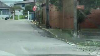 Wziął lodówkę na bark, wsiadł na rower i pojechał!