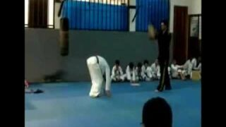 Pokaz taekwondo