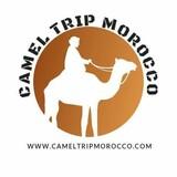 cameltripmorocco