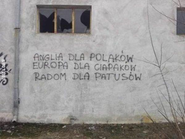 napis, reklama : Anglia dla Polaków...