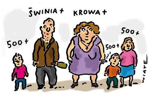 satyra : Krowa+