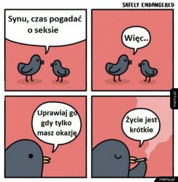 mem : Używaj