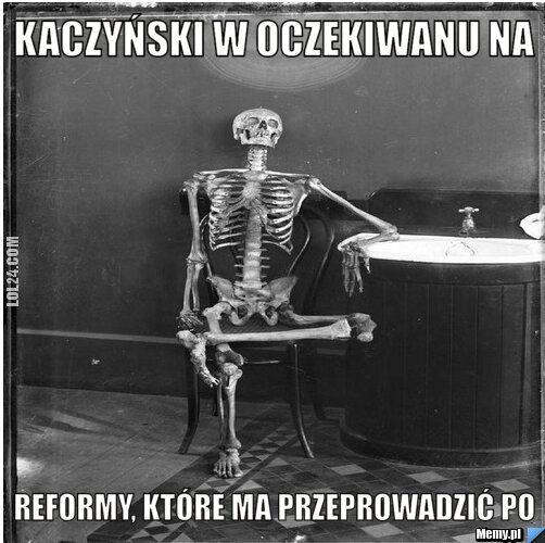 polityczna : Reformy PO