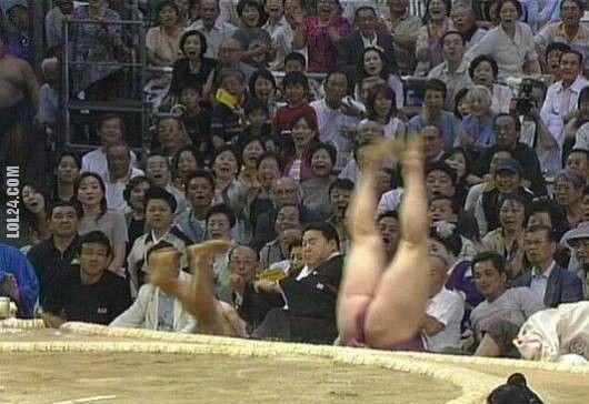 sport : Lot sumo