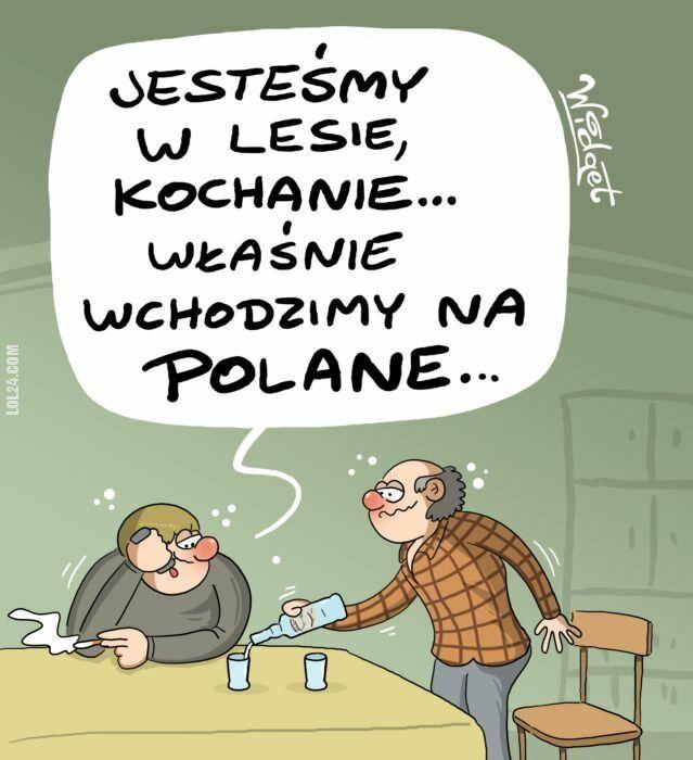 satyra : Polane...