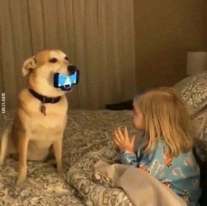 technologia : Pies najlepszy przyjaciel człowieka