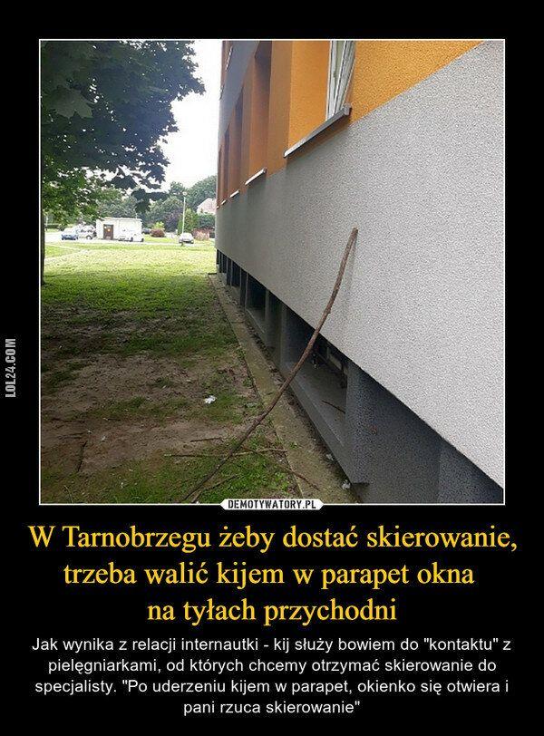 demotywator : Tym czasem w Tarnobrzegu, żeby dostać skierowanie ...