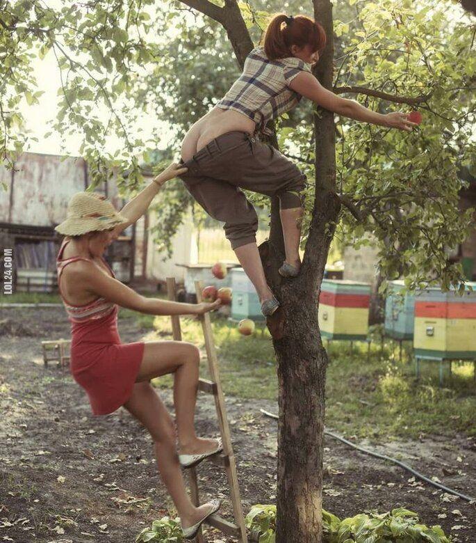kobieta : Dziewczyny zrywają jabłka