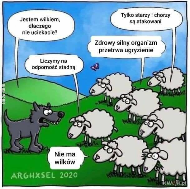 satyra : Wilk i owce