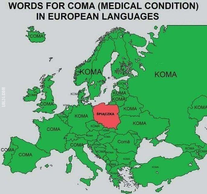 inne : I jak tu się z resztą Europy dogadać...