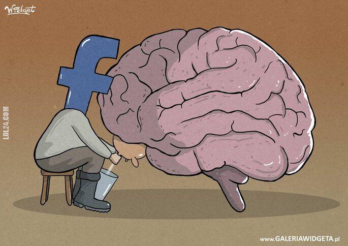 inne : Dojenie mózgu