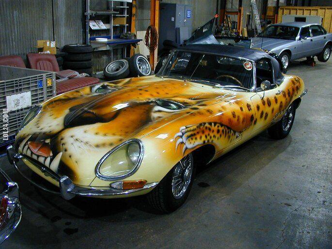 motoryzacja : Jaguar E-Type