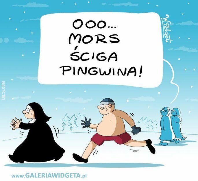 rysunek : Mors i pingwin