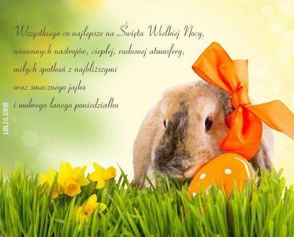 napis, reklama : Wielkanoc 2021