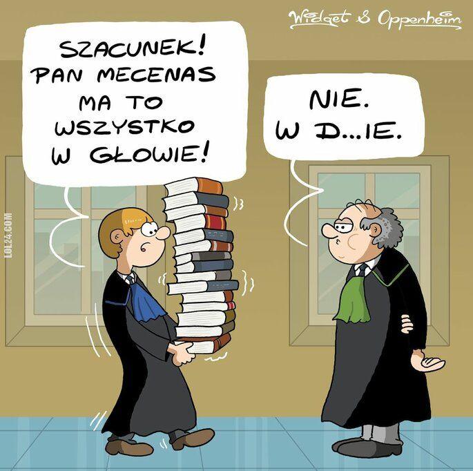komiks : Prawnicy-przepisy