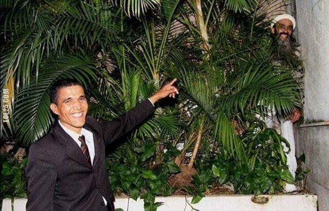 polityczna : Obama & BinLaden