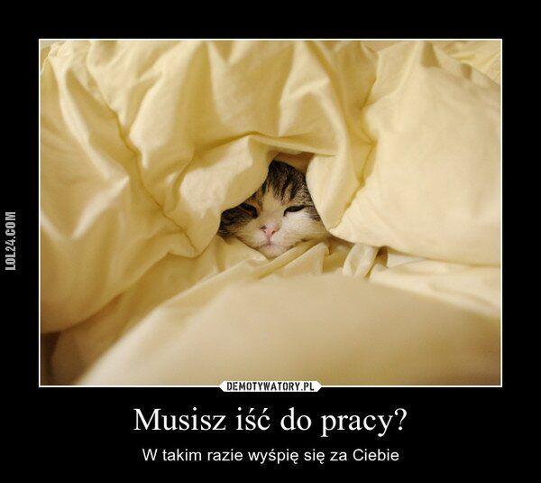 zwierzak : Wyśpię się za Ciebie!