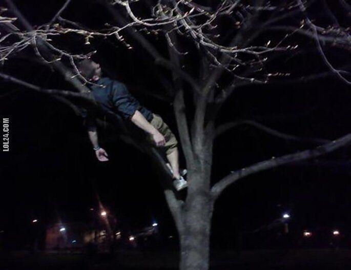 po imprezie : Drzemka na drzewie