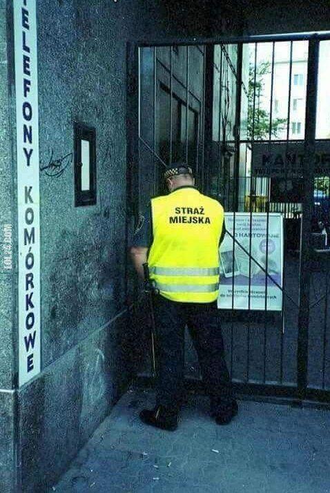 wpadka : Straż miejska szczanie