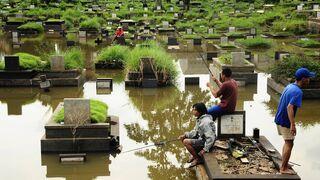 Na cmentarzu na rubach