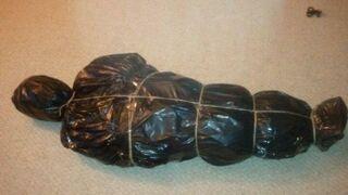 Jak zapakować choinkę przed wyrzuceniem na śmietnik