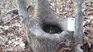 Ekologiczna toaleta w lesie
