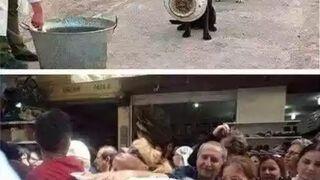 Kultura zwierząt, a ludzi