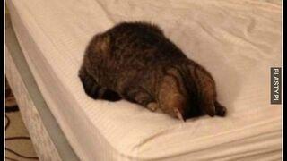 Po ciężkim dniu
