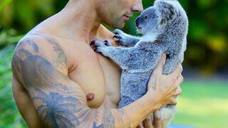 Australijski strażak z koalą