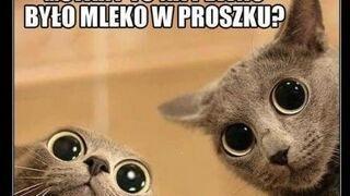 Mleko???