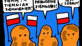 Prawdziwe ziemniaki