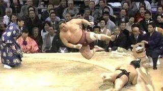 Lot sumo