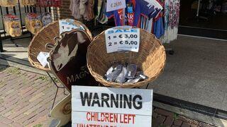 Dzieci pozostawione bez opieki będą sprzedawane do cyrku