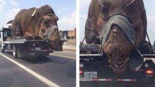 Tak potraktowali dinozaura! Gdzie jest stowarzyszenie obrony zwierząt?