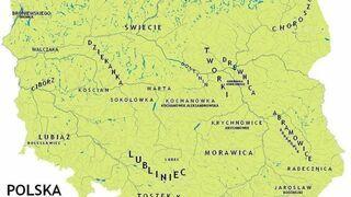 Słownik synonimiczny języka polskiego - czubki
