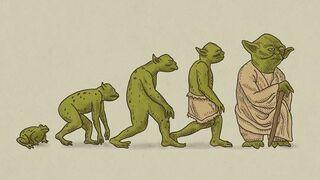 Yoda - ewolucja
