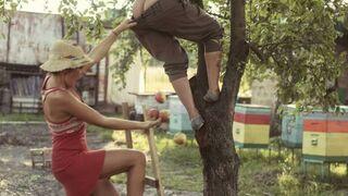 Dziewczyny zrywają jabłka