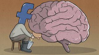 Dojenie mózgu