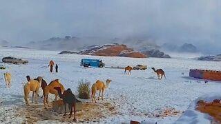 Zima na pustyni.