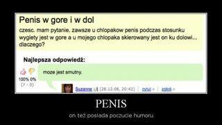 Penis w górę i w dół