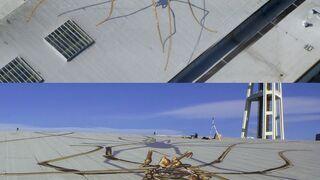 Pająki na dachu budynku