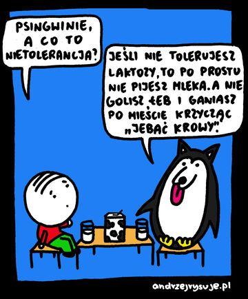Pingwinie, a co to nietolerancja?