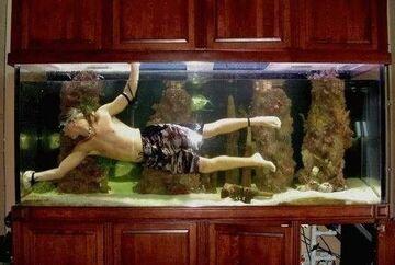 pływa w akwarium