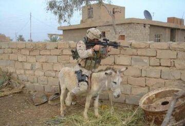 Żołnierz na osiołku