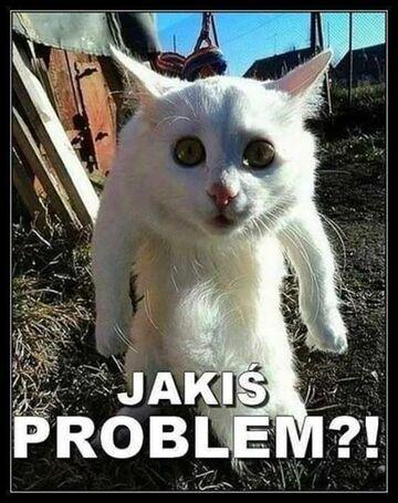 Jakiś problem